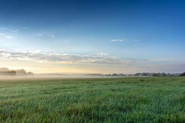 Foggy morning in the haze landscape.
