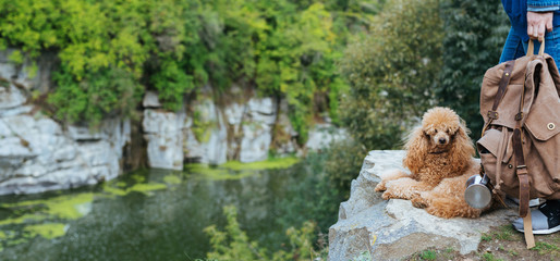 Woman traveler with  dog and looking at natural canyon with view of the mountain river. Concept of travel.