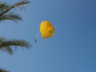 Palme und Fallschirm gegen den blauen Himmel