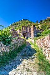 Wall Mural - Ruins and churches of the medieval Byzantine ghost town-castle of Mystras, Peloponnese, Greece