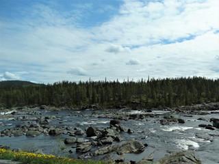 Foto auf Leinwand Fluss Fluss in Schweden