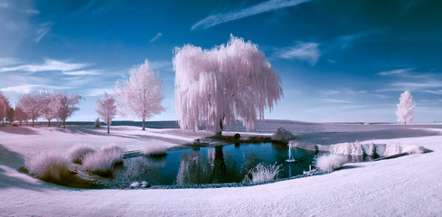 Infrared scene of a pond and trees Wall mural