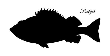 Silhouette of rockfish.