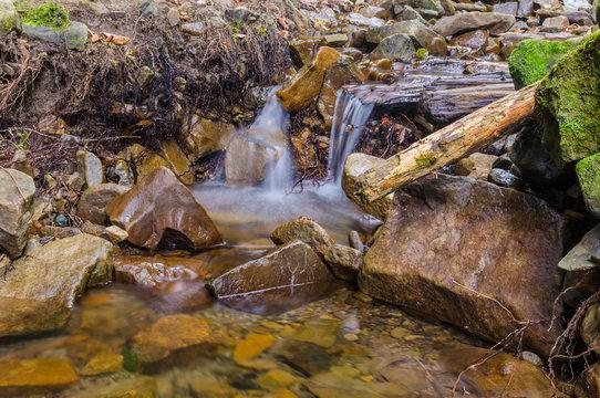 Small creek in the Carpathian Mountains in the autumn season
