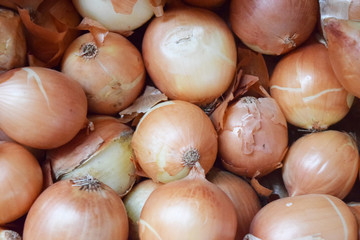 Fresh onions. Onions background. Ripe onions. Background