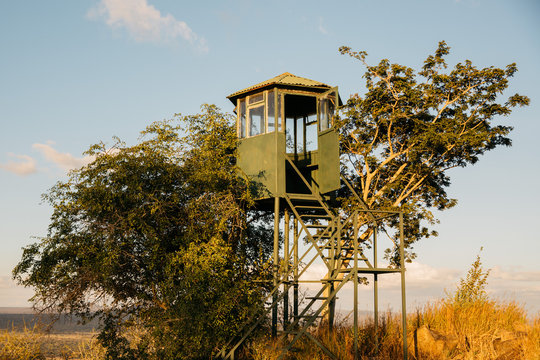 Safari Lookout