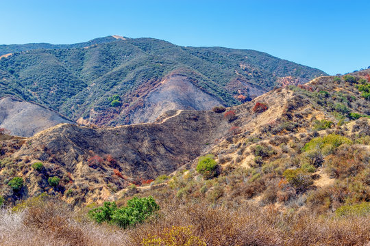 Wildfire burn scars from forest fires in Southern California mountains