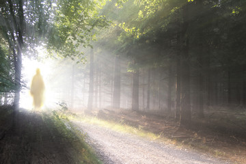 Jesus Christ walking after His resurrection. Figure in sun lights. Sunning shine in forest. Wall mural
