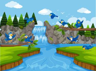 Blue birds in waterfall scene