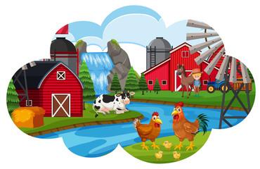 A Farm animal scene