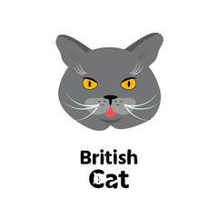 Vector Portrait of British Cat. Vector  illustration.