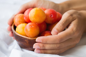 Ripe yellow plums in a clay bowl in hands on a white cloth. Atmospheric still life with soft light.