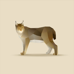Polygonal vector illustration of lynx