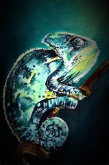 Chameleon hand drawing illustration