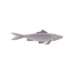 Flat vector icon of big swimming fish, side view. Marine creature. Inhabitant of ocean