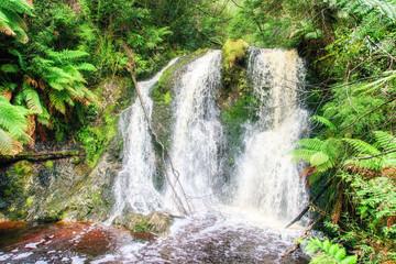 St Clair National Park, Tasmania