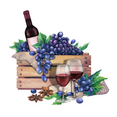 Watercolor red wine glasses, bottle in the box of blue grapes