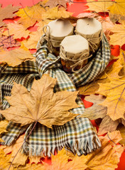 Set three jams honey natural sweets in jars red background covered fallen leaves. Jars surrounded warm scarf. Storehouse of vitamins concept. Natural homemade treats autumn season keep healthy