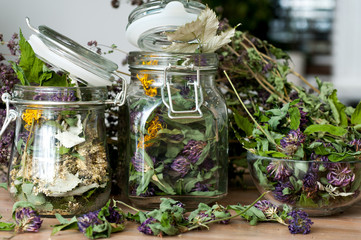 collection of dried herbs