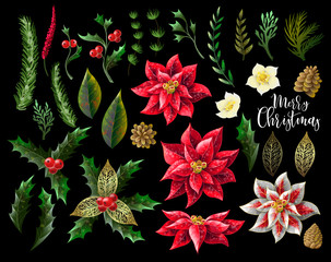 Set of Christmas decor, such as poinsettia, holly berry, fir-cone, fir branch and other isolated. Vector.