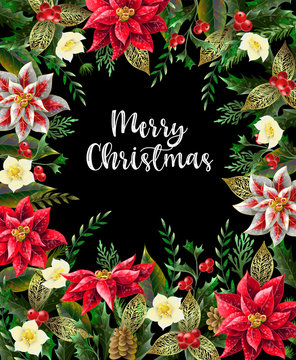 Merry Christmas poster or banner with december flowers and slogan. Vector.