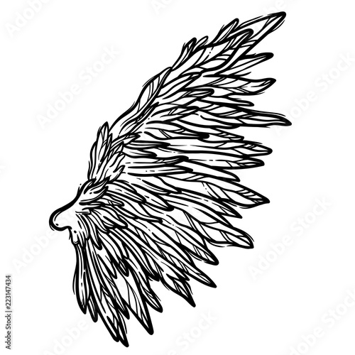Line Art Illustration Of Angel Wings Hand Drawn Vector Card Sketch