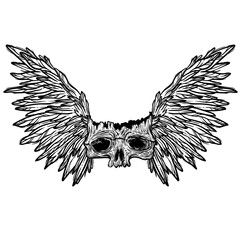 Vector illustration with a human skull and wings. Gothic brutal skull. For print t-shirts or book coloring.