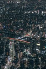 view of Tokyo city at night
