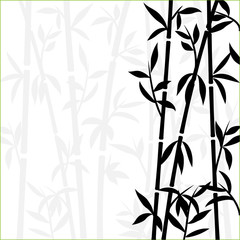 Bamboo background japanese asian plant wallpaper grass. Bamboo tree vector pattern black and white