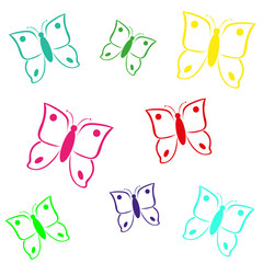 multicolored butterfly on white background