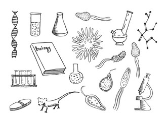 Biology vector doodle sketch. Hand drawn illustrations isolated on white background