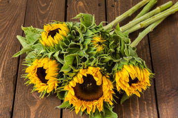 Sunflowers on wooden table. Bouquet.