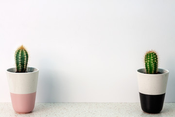 Terrazzo desk on a white background with empty copy space wall with two cactuses in pots