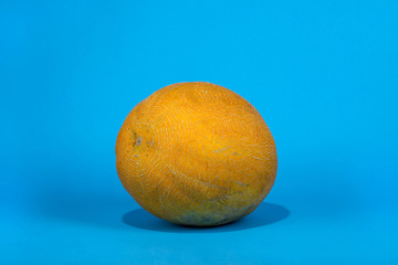 Ripe big melon on a blue background