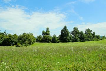 Slovenian nature