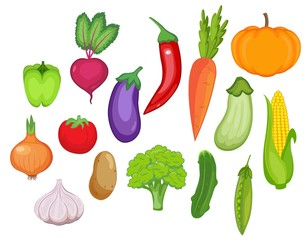 vegetable set. vector illustration