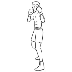 vector of boxer