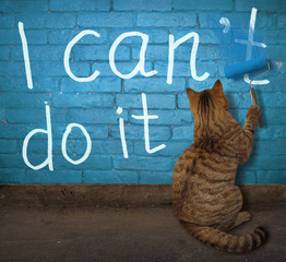 The cat is painting over the letter t in the word can't on a blue brick wall.