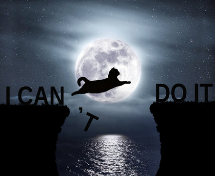 The brave cat jumping over the abyss. I can do it. Positive attitude and motivation