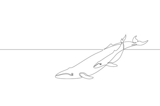 Single continuous line art marine whale parent baby silhouette. Nature ocean ecology life environment concept. Big tale sea wave mother animal design one sketch outline drawing vector illustration