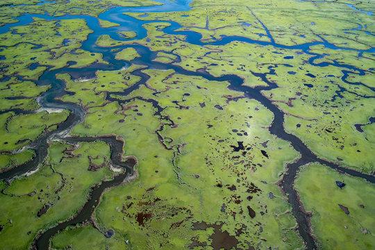 Herring River Marsh Cape Cod