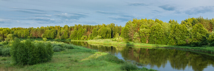 summer landscape. beautiful view of the river with green coasts, coastal forest, lawn and bushes