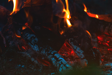 Charred wood in the fire. Burning wood in bright flames in the dark