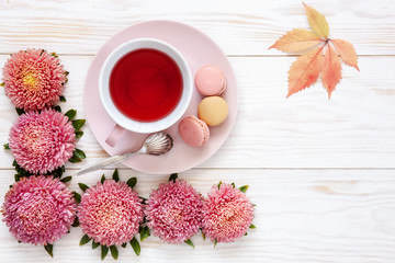 Autumn floral background - pink asters, pink cup of fruit tea and pink macaroons on white wooden table. Top view, close-up, place for text..