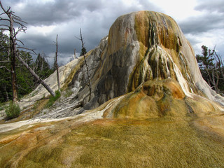 Mammoth Hot Springs, Yellowstone National Park, USA
