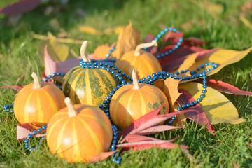 blue beads on pumpkins