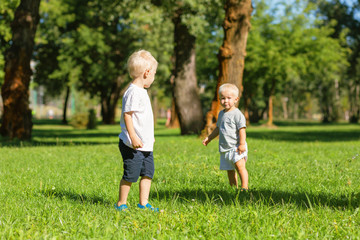 Company. Cute nice boys playing while spending a day in the garden together