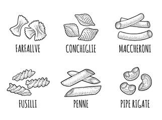 Set pasta. Farfalle, conchiglie, maccheroni, fusilli, penne, pipe rigate. Engraving