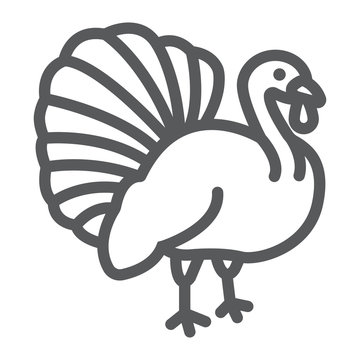 Turkey bird line icon, animal and farm, poultry sign, vector graphics, a linear pattern on a white background.