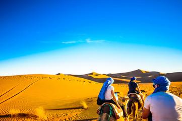 Camel trek in the desert of Morocco next to M'hamid